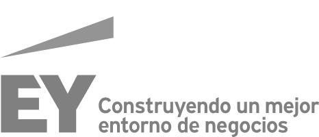 ey_logo-mxes g